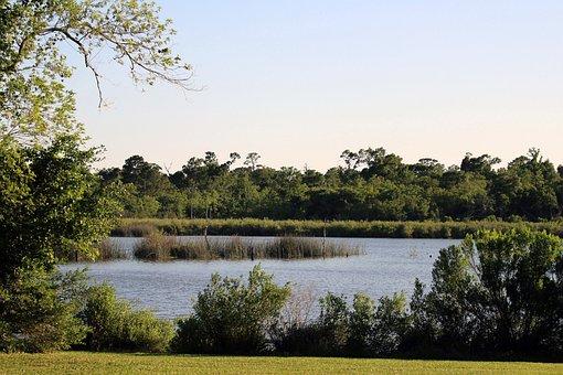 Park, Lake, Nature, Water, Landscape, Forest, Sky