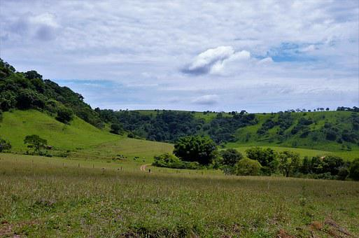 Landscape, Green, Serrated, Brazil, Rural
