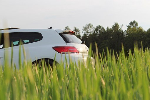 Vw, Scirocco, Auto, Field, Pkw, Dare, Vehicle