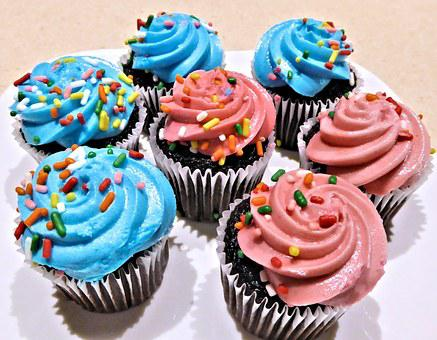 Chocolate Mini Cupcakes, Blue Pink Frosting, Sprinkles
