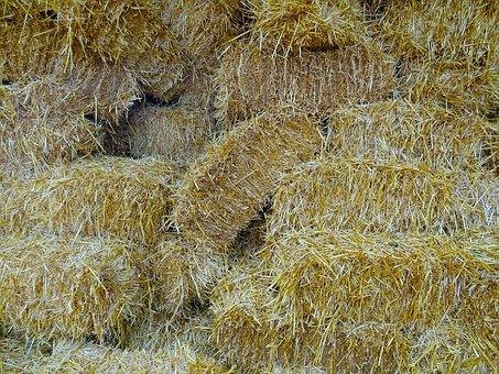 Straw, Straw Bales, Farm, Compressed Bales, Background