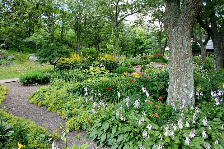 Garden, Path, Flowers, Trees, Natural, Summer, Walkway