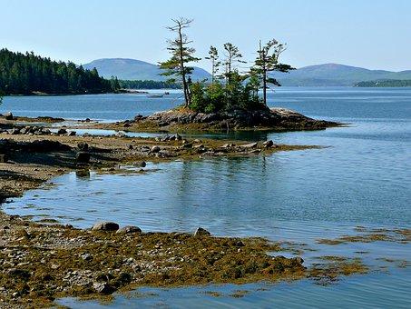 Sea, Shore, Water, Calm, Coastline, Beach