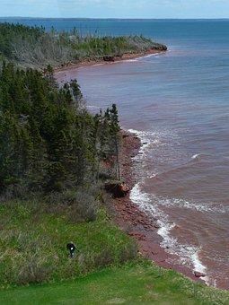Shoreline, Seascape, Water, Sea, Ocean, Coast