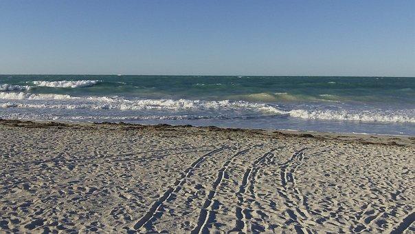 Beach, Sea, Sand, Summer, Vacation, Tropical, Landscape