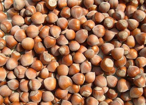 Hazelnut, Christmas, Nuts