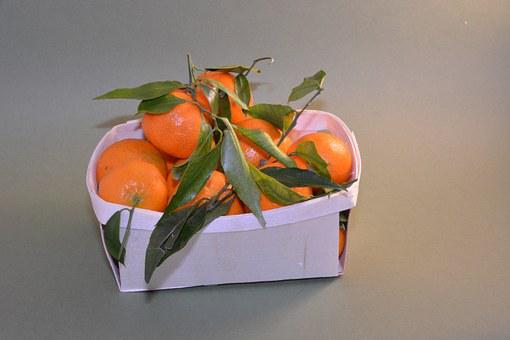 Mandarins, Fruit Basket, Fruit, Power, Nature