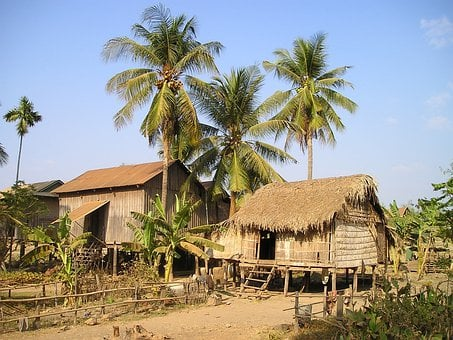 Cottages, Cambodia, Land, Live, Palm Trees, Heated