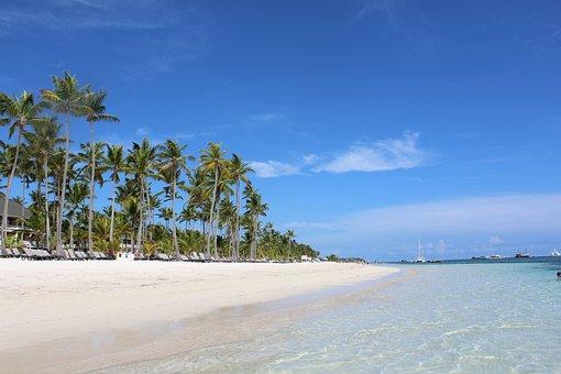 Punta Cana, Palms, Dominican Republic, Tropical, Travel