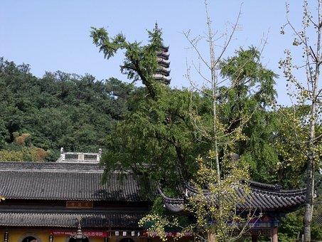 Temple, Buildin, Buddha, Tower, Asia, Religion