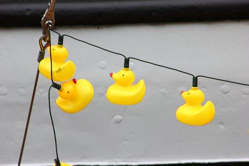 Plastic, Ducks, Empty, Seafaring, Ship Meeting