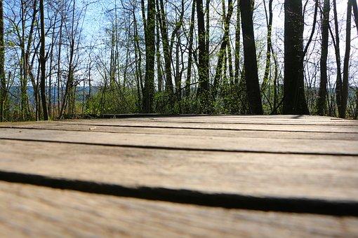 Walking Bridge, Nature Conservation, Flagstone Path