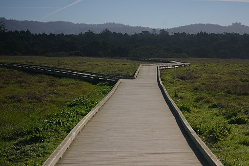 Mackerricher State Park, California, Boardwalk
