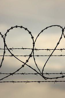 Heart, Shape, Love, Spikes, Barbed Wire, Emotions
