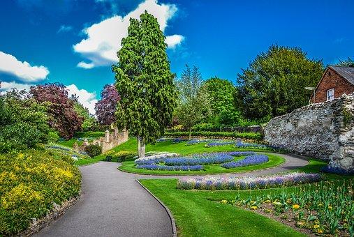 Gardens, Guildford, England, Sunny, Sky, Summer