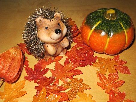 Autumn, Hedgehog, Pumpkin, Decoration, Leaves, Orange