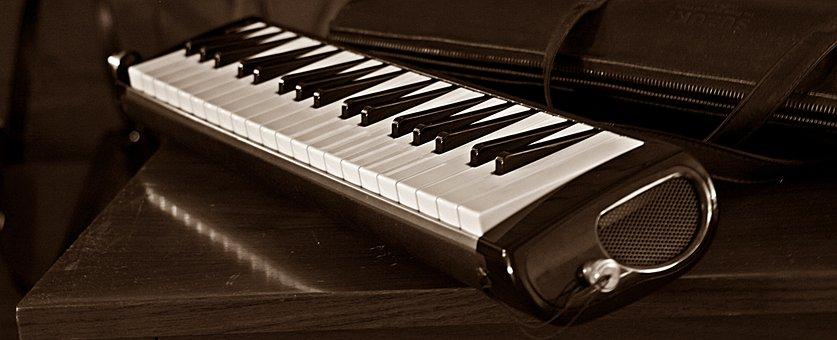 Melodica, Melodion, Suzuki Pro-37, Musical