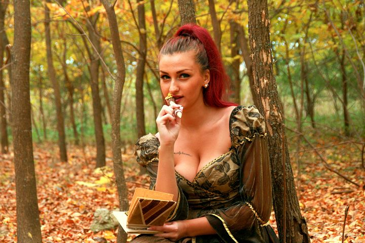 Girl, Princess, Autumn, Leaves, Yellow, Forest, Writer