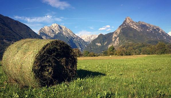 Hay Bale, Slovenia, Alps, Bovec, Mountain, Landscape