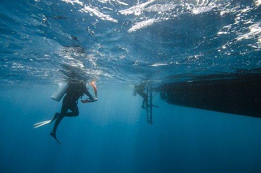 Maldives, Divers, Sea, Water, Boat