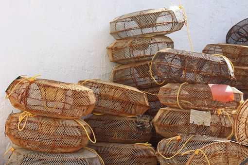 Fishing, Lobster Pots, Harbour