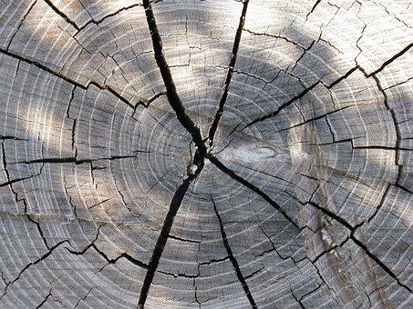Wood, Trunk, Beige, Carving