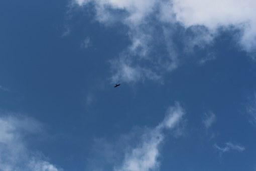 Sky, Raptor, Basilicata, Nature