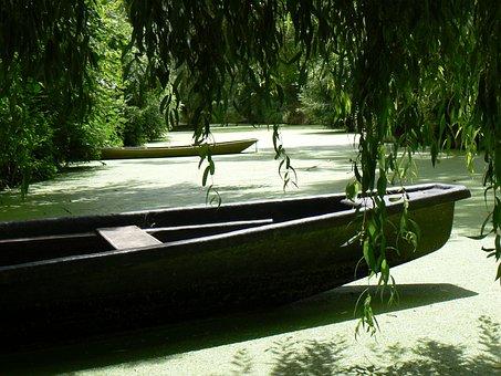 Green Venice, Boat, Nature