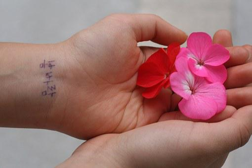 Spring, Flowers, Hands, Pink, Red, Korean Writing