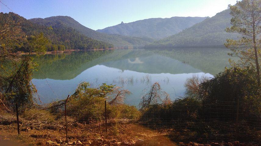 Marsh, Nature, Del Tranco Reservoir
