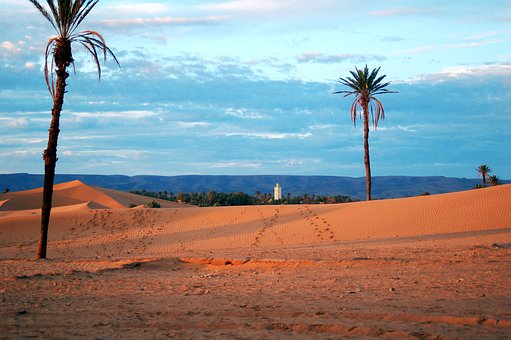 Morocco, Africa, Desert, Marroc, Sand, Soledad