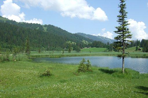 Lake Lauenen, Alpine, Switzerland, Summer, Landscape
