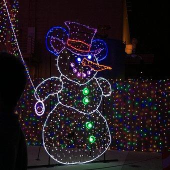 Disney, Osborne Lights, Family, Fun