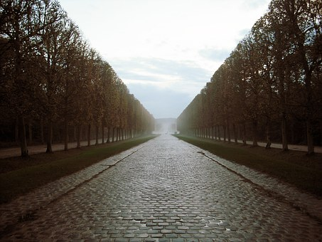Versaille, Paris, European, Trees, Road