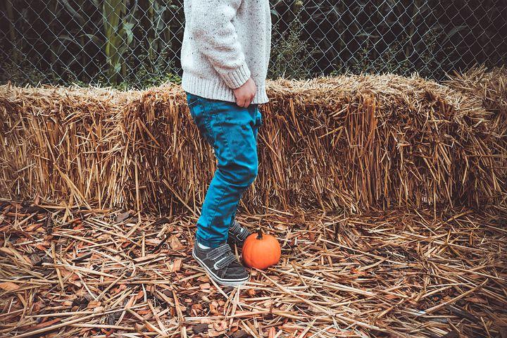 Boy, Child, Hay, Pumpking, Autumn, Fall, October