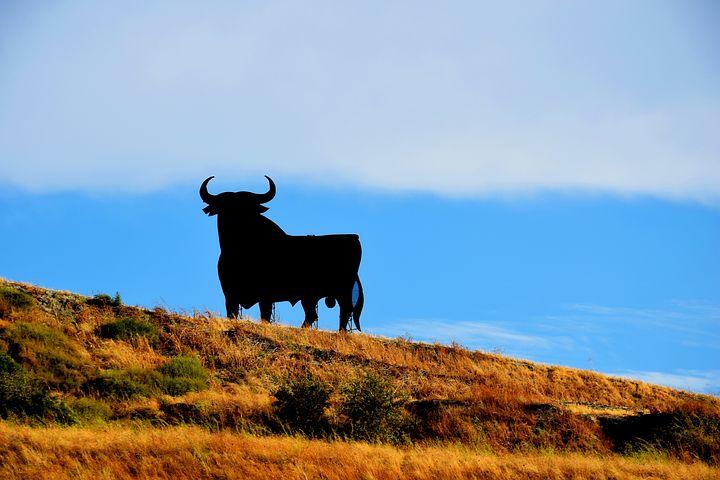 Spain, Osborne, Bull, Holiday, Summer