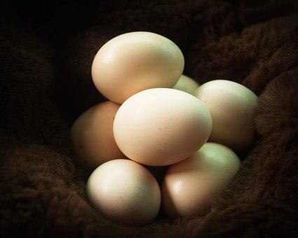 Egg, Fresh, Cholesterol, Farm, Kitchen, Brown, Food