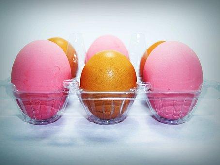 Egg, Fresh, Cholesterol, Farm, Brown, Food, Kitchen