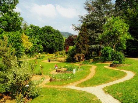 Freiburg, Germany, Botanical Garden, Landscape, Scenic