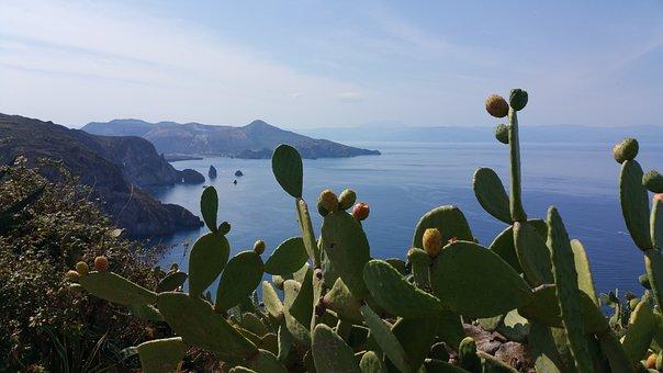 Aeolian Islands, Sea, Landscape, Island, Prickly Pears