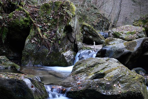 Teigitsch, Bach, Nature, Styria, Creek