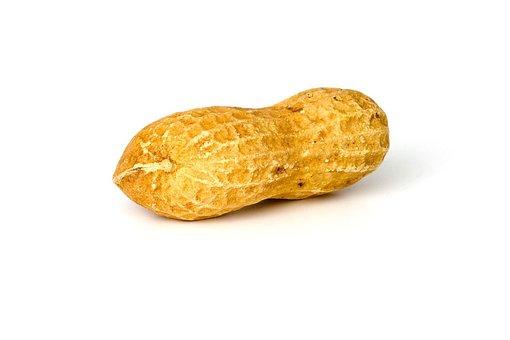 Peanut, Peanuts, Nut, Food, Whole, Brown, Yellow