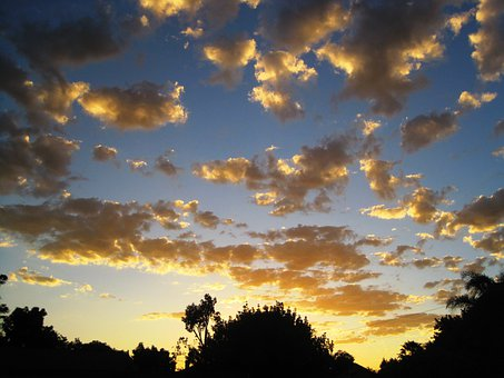 Clouds, Loose, Gold, Light, Sunset, Sky, Blue, Trees