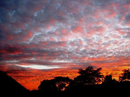 Sunset, Clouds, Patchy, Loose, Orange, Trees