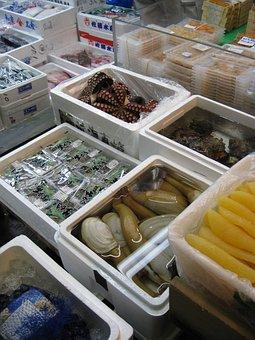 Market, Fish, Japan, Tokyo, Tsukiji, Tourist