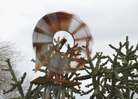Windmill, Cactus, Motion, Spin, Picturesque, Outdoor
