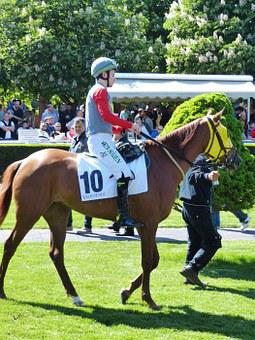 Horse Racing, Gallop, Sport, Competition, Istanbul