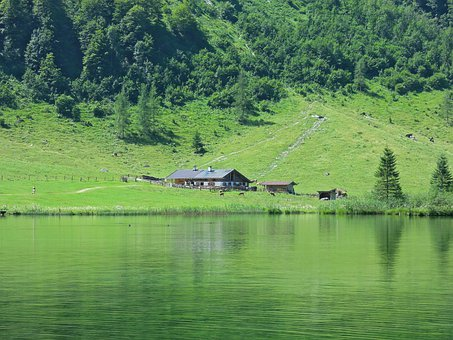 Alm Hut, Farm, Agriculture, Management, Mountain, Lake