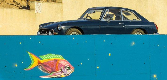 Old Car, Fish, Fantasy, Graffiti, Colour, Cyprus