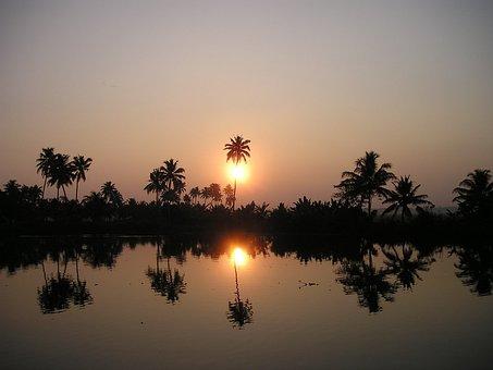 India, Palm Trees, Sonenuntergang, Evening, Back Light